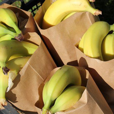 Melanie - Small organic fruit bag